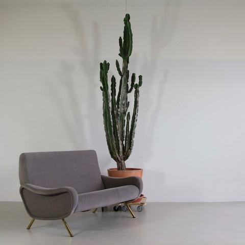 Two Seat Sofa by Marco ZANUSO for ARFLEX